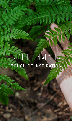 TOUCH OF INSPIRATION